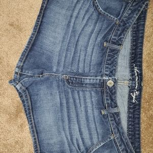 American Eagle Shorts  Size 18 Ladies EUC